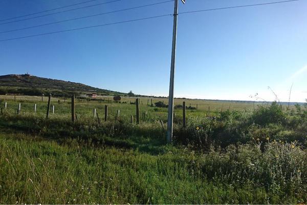 Foto de terreno comercial en venta en carretera a jerez , fresnillo, fresnillo, zacatecas, 5820615 No. 07