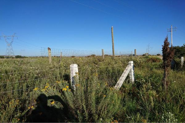Foto de terreno comercial en venta en carretera a jerez , fresnillo, fresnillo, zacatecas, 5820615 No. 08