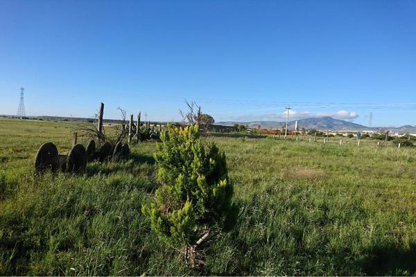 Foto de terreno comercial en venta en carretera a jerez , fresnillo, fresnillo, zacatecas, 5820615 No. 10