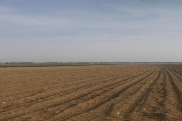 Foto de terreno comercial en venta en carretera a la marquesa s/n , la hacienda de cuautenango, tenango del valle, méxico, 7151857 No. 01