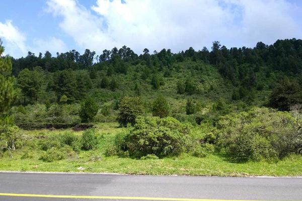 Foto de terreno habitacional en venta en carretera a los azufres , san pedro jacuaro, hidalgo, michoacán de ocampo, 5884380 No. 01