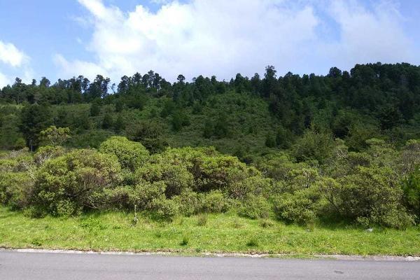 Foto de terreno habitacional en venta en carretera a los azufres , san pedro jacuaro, hidalgo, michoacán de ocampo, 5884380 No. 02