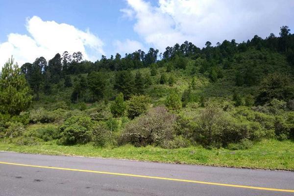 Foto de terreno habitacional en venta en carretera a los azufres , san pedro jacuaro, hidalgo, michoacán de ocampo, 5884380 No. 03
