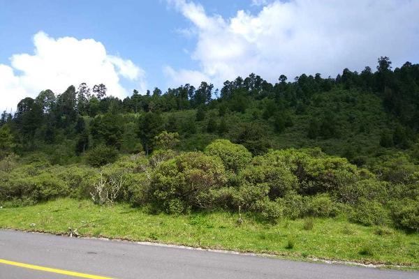 Foto de terreno habitacional en venta en carretera a los azufres , san pedro jacuaro, hidalgo, michoacán de ocampo, 5884380 No. 04