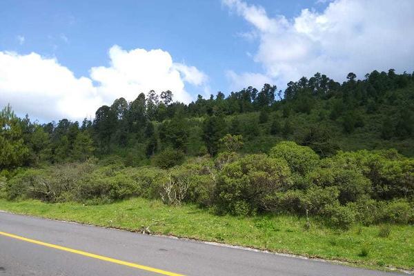 Foto de terreno habitacional en venta en carretera a los azufres , san pedro jacuaro, hidalgo, michoacán de ocampo, 5884380 No. 05