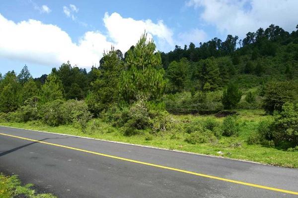 Foto de terreno habitacional en venta en carretera a los azufres , san pedro jacuaro, hidalgo, michoacán de ocampo, 5884380 No. 06