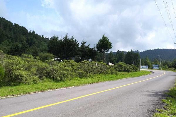 Foto de terreno habitacional en venta en carretera a los azufres , san pedro jacuaro, hidalgo, michoacán de ocampo, 5884380 No. 07