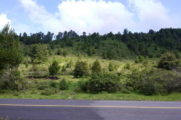 Foto de terreno habitacional en venta en carretera a los azufres , san pedro jacuaro, hidalgo, michoacán de ocampo, 5884380 No. 08