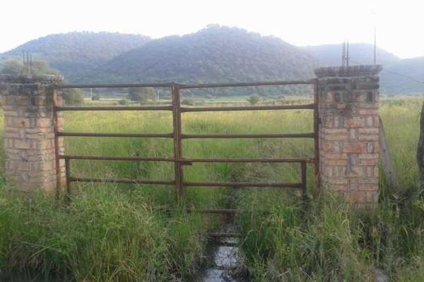 Foto de terreno industrial en venta en carretera a san isidro mazatepec kilometro 10.4, santa cruz de las flores, tlajomulco de zúñiga, jalisco, 5391314 No. 06