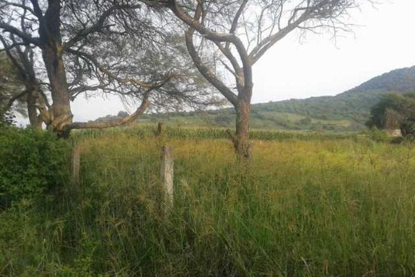 Foto de terreno industrial en venta en carretera a san isidro mazatepec kilometro 10.4, santa cruz de las flores, tlajomulco de zúñiga, jalisco, 5391314 No. 07