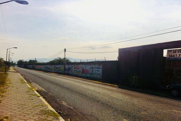 Foto de terreno comercial en venta en carretera a tlayalo , axochiapan, axochiapan, morelos, 13895267 No. 02