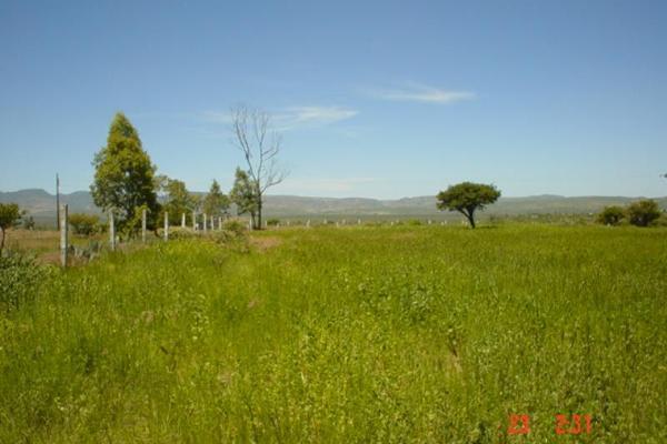 Foto de terreno comercial en venta en carretera ags. - calvillo 000, gral. ignacio zaragoza, jesús maría, aguascalientes, 2676718 No. 03