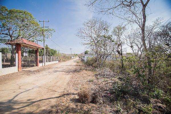 Foto de terreno habitacional en venta en carretera al istmo kilometro 130 , candelaria, berrioz?bal, chiapas, 3156937 No. 03