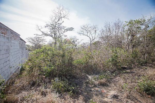 Foto de terreno habitacional en venta en carretera al istmo kilometro 130 , candelaria, berrioz?bal, chiapas, 3156937 No. 05
