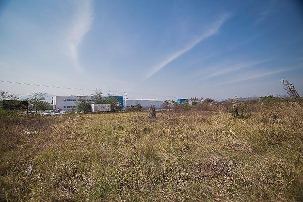 Foto de terreno habitacional en venta en carretera al istmo kilometro 130 , candelaria, berriozábal, chiapas, 3156937 No. 10