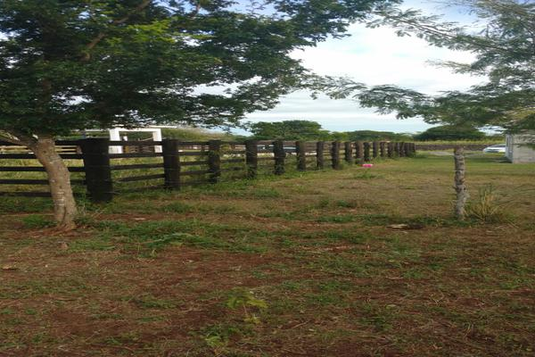 Foto de terreno comercial en renta en carretera aldama-barra del tordo , aldama, aldama, tamaulipas, 5921084 No. 02