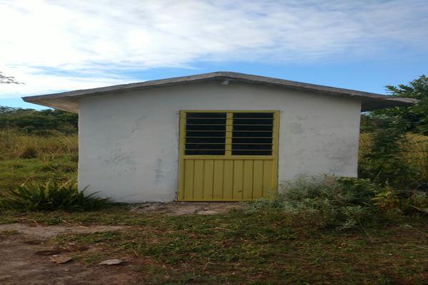 Foto de terreno comercial en renta en carretera aldama-barra del tordo , aldama, aldama, tamaulipas, 5921084 No. 04