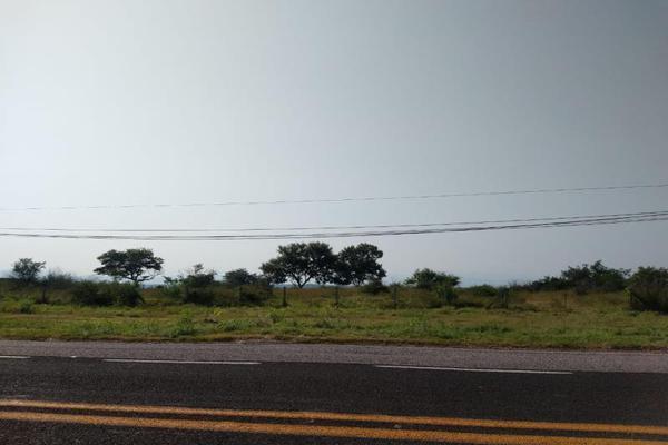 Foto de terreno industrial en venta en carretera alpuyeca- acapulco , alpuyeca, xochitepec, morelos, 0 No. 03