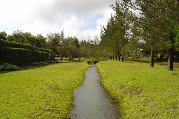 Foto de rancho en venta en carretera amealco coroneo 001, amealco de bonfil centro, amealco de bonfil, querétaro, 10023075 No. 03