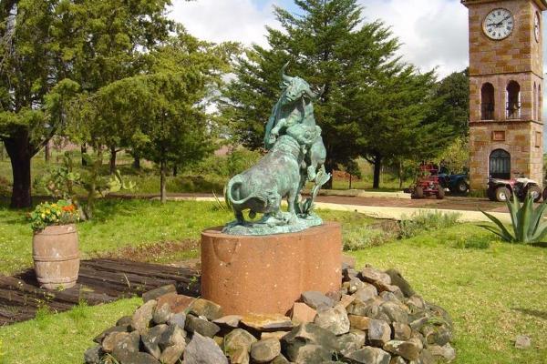 Foto de rancho en venta en carretera amealco coroneo 001, balcones de amealco, amealco de bonfil, querétaro, 10023075 No. 07