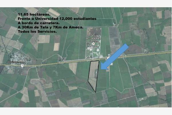 Foto de terreno habitacional en venta en carretera ameca-gdl 6.15 , los pocitos, ameca, jalisco, 2680604 No. 03