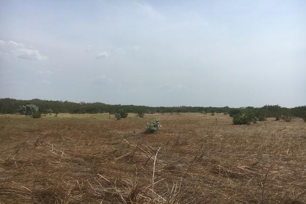 Foto de terreno habitacional en venta en carretera champoton cd del carmen kilometro 120 , san luis carpizo, champotón, campeche, 7243988 No. 05