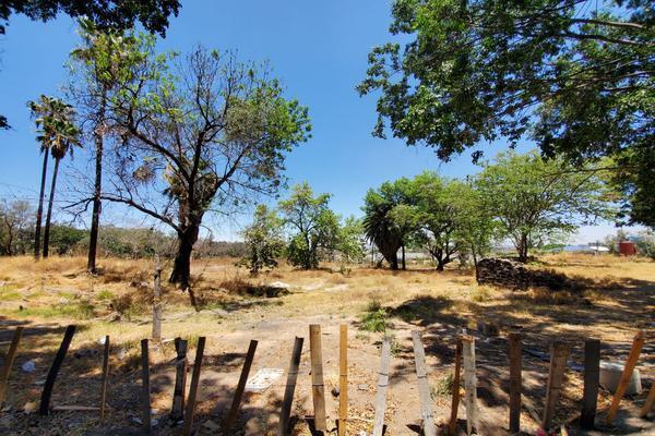 Foto de terreno habitacional en venta en carretera chapala , el tapatío, san pedro tlaquepaque, jalisco, 20363669 No. 12
