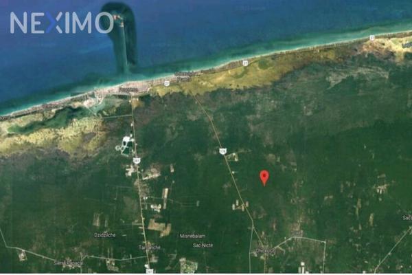 Foto de terreno industrial en venta en carretera chicxulub pueblo-chicxulub puerto , chicxulub, chicxulub pueblo, yucatán, 8175320 No. 06