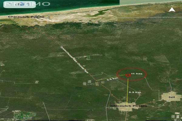 Foto de terreno industrial en venta en carretera chicxulub pueblo-chicxulub puerto , chicxulub, chicxulub pueblo, yucatán, 8175320 No. 07
