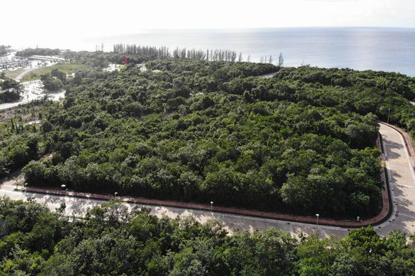 Foto de terreno habitacional en venta en carretera costera sur , cozumel centro, cozumel, quintana roo, 12844305 No. 04