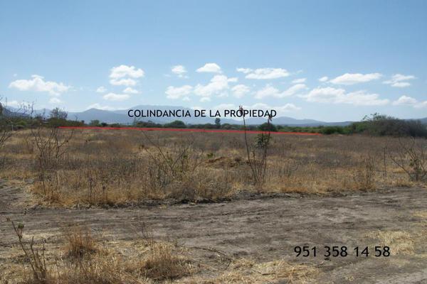 Foto de terreno comercial en venta en carretera cristóbal colón kilometro 31, ciudad yagul, tlacolula de matamoros, oaxaca, 18714961 No. 04
