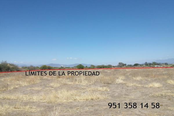 Foto de terreno comercial en venta en carretera cristóbal colón kilometro 31, ciudad yagul, tlacolula de matamoros, oaxaca, 18714961 No. 05