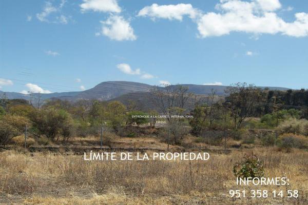 Foto de terreno comercial en venta en carretera cristóbal colón kilometro 31, ciudad yagul, tlacolula de matamoros, oaxaca, 18714961 No. 07