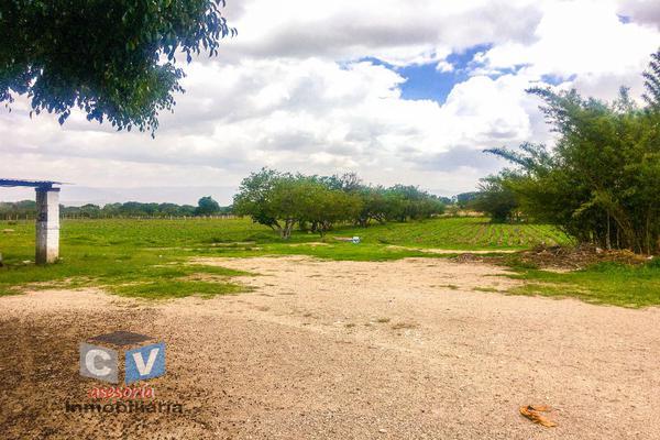Foto de terreno comercial en venta en carretera cristóbal colón kilometro 531, san sebastián etla, san pablo etla, oaxaca, 0 No. 02