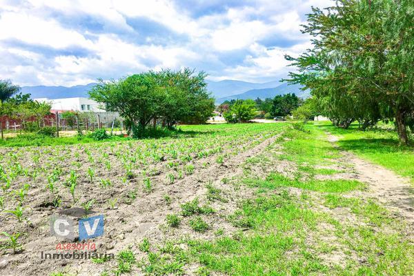Foto de terreno comercial en venta en carretera cristóbal colón kilometro 531, san sebastián etla, san pablo etla, oaxaca, 0 No. 03