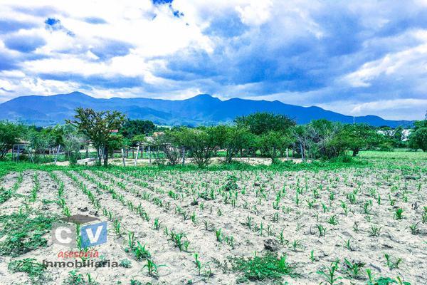 Foto de terreno comercial en venta en carretera cristóbal colón kilometro 531, san sebastián etla, san pablo etla, oaxaca, 0 No. 04