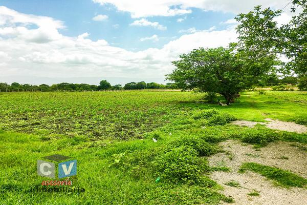 Foto de terreno comercial en venta en carretera cristóbal colón kilometro 531, san sebastián etla, san pablo etla, oaxaca, 0 No. 05