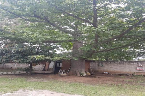 Foto de terreno habitacional en venta en carretera cristobal colón , san pablo etla, san pablo etla, oaxaca, 18391889 No. 04