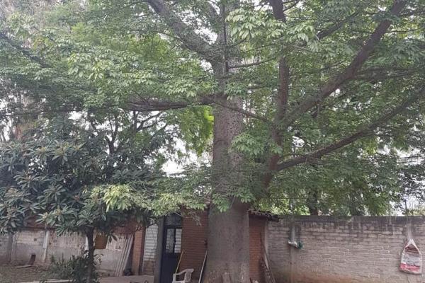 Foto de terreno habitacional en venta en carretera cristobal colón , san pablo etla, san pablo etla, oaxaca, 5435816 No. 04