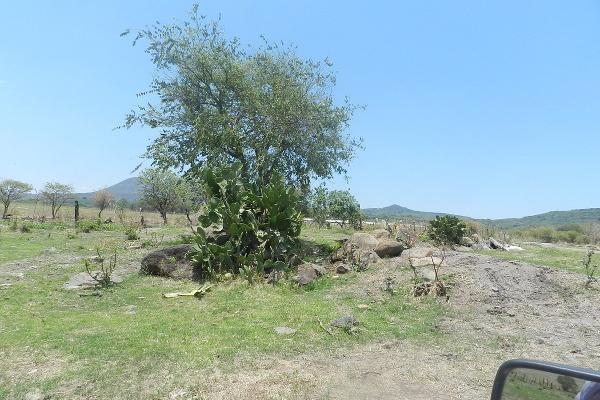 Foto de terreno habitacional en venta en carretera el salto jalisco la purisima s/n el laurel , la purísima, tlajomulco de zúñiga, jalisco, 3423339 No. 18