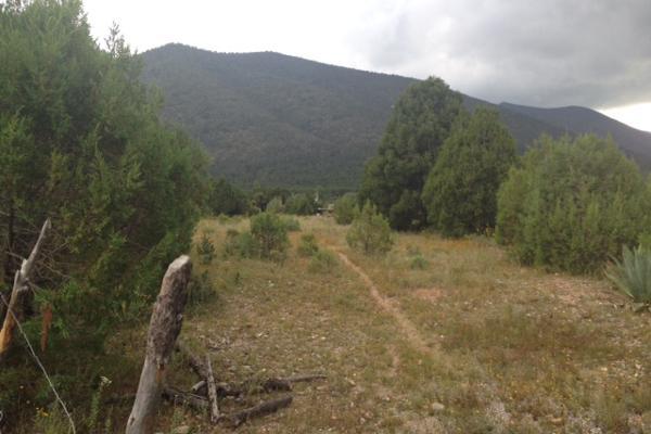 Foto de terreno habitacional en venta en carretera el tunal , el cedrito, arteaga, coahuila de zaragoza, 3455452 No. 04