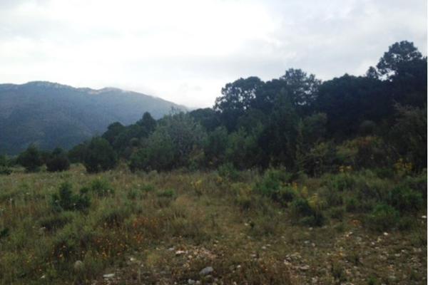 Foto de terreno habitacional en venta en carretera el tunal , el cedrito, arteaga, coahuila de zaragoza, 3455452 No. 06
