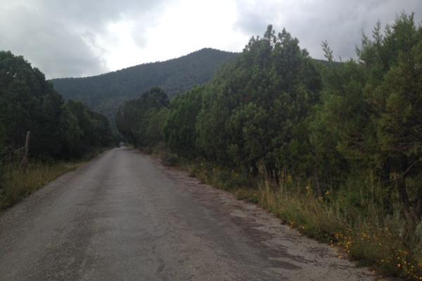 Foto de terreno habitacional en venta en carretera el tunal , el cedrito, arteaga, coahuila de zaragoza, 3455452 No. 07
