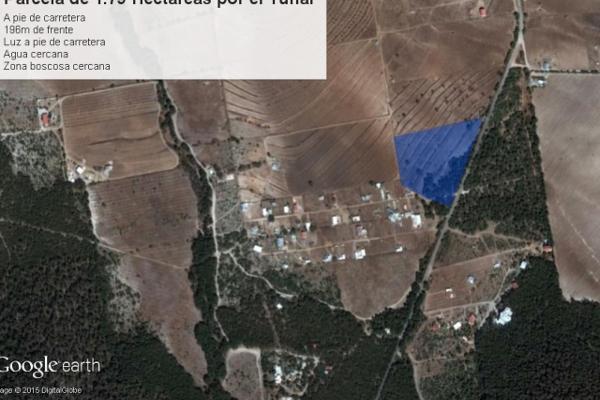 Foto de terreno habitacional en venta en carretera el tunal , el cedrito, arteaga, coahuila de zaragoza, 3455452 No. 10