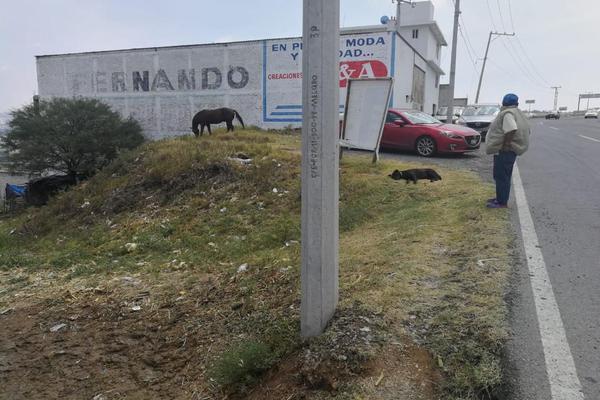 Foto de terreno comercial en venta en carretera estatal 411 , santa bárbara 1a sección, corregidora, querétaro, 0 No. 02