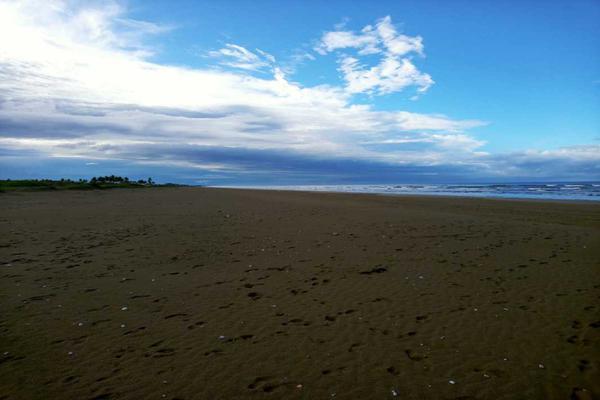 Foto de terreno habitacional en venta en carretera federal #15 mazatlan nayarit , playa novillero, tecuala, nayarit, 15943464 No. 03