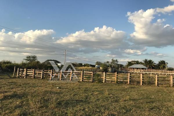 Foto de rancho en venta en carretera federal 186 chetumal - villahermosa 186, pital nuevo, carmen, campeche, 7197015 No. 02