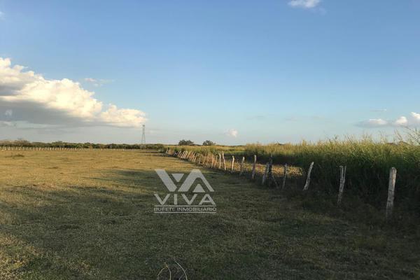 Foto de rancho en venta en carretera federal 186 chetumal - villahermosa 186, pital nuevo, carmen, campeche, 7197015 No. 03