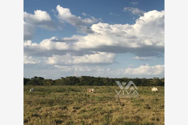 Foto de rancho en venta en carretera federal 186 chetumal - villahermosa 186, pital nuevo, carmen, campeche, 7197015 No. 05