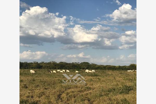 Foto de rancho en venta en carretera federal 186 chetumal - villahermosa 186, pital nuevo, carmen, campeche, 7197015 No. 06